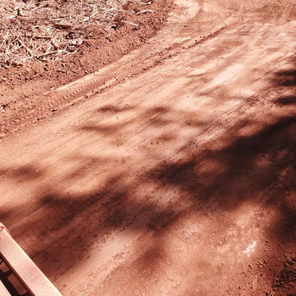 newly flattened road
